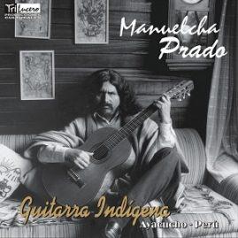 Guitarra Indigena